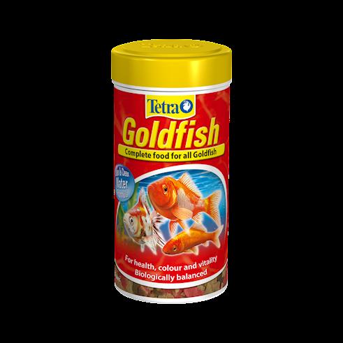 Goldfish human food